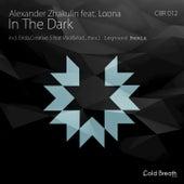 In the Dark by Alexander Zhakulin