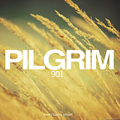 901 by Pilgrim