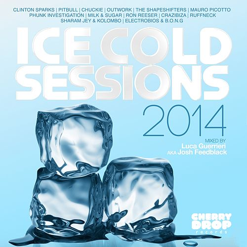 Ice Cold Sessions 2014 Mixed By Luca Guerrieri aka Josh Feedblack - EP by Various Artists
