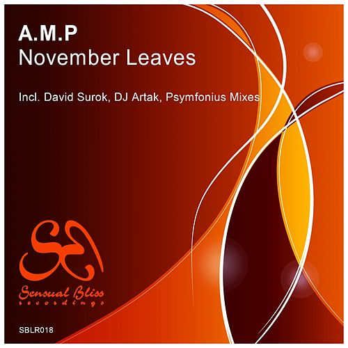 November Leaves by A.M.P.