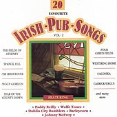 20 Favourite Irish Pub Songs, Vol. 2 by Various Artists