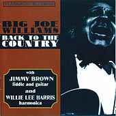 Back To The Country by Big Joe Williams