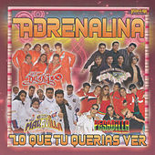 Lo Que Tu Querias Ver by Various Artists