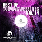 Best of Turning Wheel Rec, Vol. 14 by Various Artists
