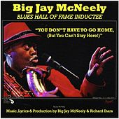 You Don't Have to Go Home, (But You Can't Stay Here) von Big Jay McNeely