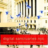 Digital Sanctuaries, New York City, Vol. 1 by Electric Kulintang