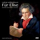Für Elise by Anastasi