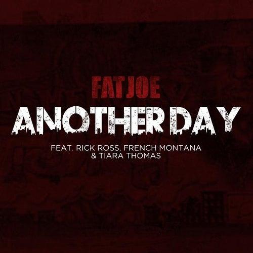 Another Day von Fat Joe