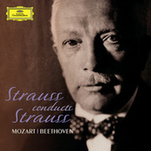 Strauss Conducts Strauss by Various Artists