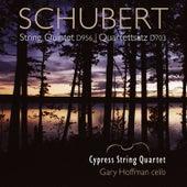 Schubert: String Quintet in C Major by Various Artists
