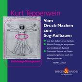 Vom Druck-Machen zum Sog-Aufbauen - Beziehungsmanagement by Kurt Tepperwein