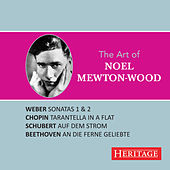 The Art of Noel Mewton-Wood by Various Artists