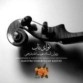 Shahnavazan-2: Navaye Nab by Habibollah Badiee