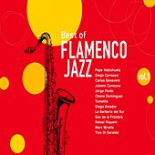 Best of Flamenco Jazz, Vol. 1 by Various Artists