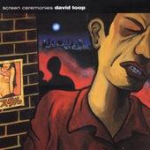 Screen Ceremonies by David Toop