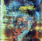 Spirit World by David Toop