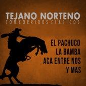 Tejano Norteno, Con Corridos Clasicos el Pachuco, La Bamba, Aca Entre Nos y Mas by Various Artists