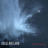 Wine Dark Sea by Jolie Holland