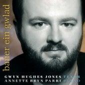 Baner Ein Gwlad by Gwyn Hughes Jones