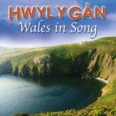Hwyl Y Gan / Wales In Song by Various Artists