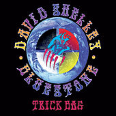 Trick Bag by David Shelley