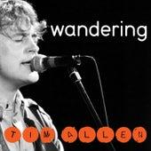 Wandering by Tim Allen