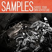 Choose Your Own Adventure by The Samples