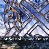 Symud Ymlaen by Cor Seiriol