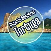Tortuga by Antonio Banderas