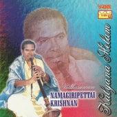 Kalyana Melam by Kannan