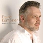 Bariton / Baritone by David Kempster