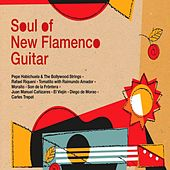 Soul Of New Flamenco Guitar by Various Artists