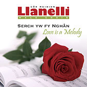 Serch Yw Fy Nghan / Love Is A Melody by Cor Meibion Llanelli Male Voice Choir