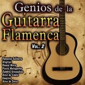 Genios de la Guitarra Flamenca, Vol. 2 by Various Artists