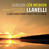 Goreuon Cor Meibion Llanelli / Best Of The Llanelli Male Voice Choir by Cor Meibion Llanelli Male Voice Choir