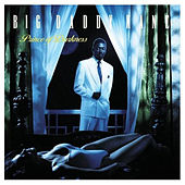 The Lover in You by Big Daddy Kane