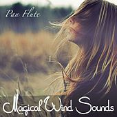 Magical Wind Sounds by Various Artists