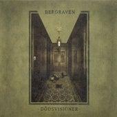 Dödsvisioner by Bergraven