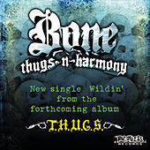Wildin' by Bone Thugs-N-Harmony
