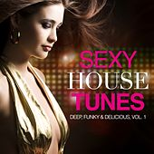 Sexy House Tunes - Deep, Funky & Delicious, Vol. 1 by Various Artists