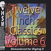Twelve Inch Disco Classics from the 70s, Vol. 6 by Various Artists