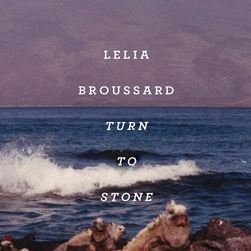 Turn to Stone by Lelia Broussard