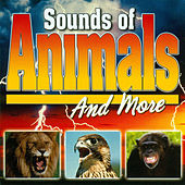 Sounds Of Animals by Sound Effects (1)