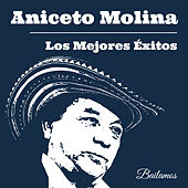 Los Mejores Éxitos de Aniceto Molina by Various Artists