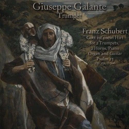 Franz Schubert: Gott Ist Mein Hirt for 2 Trumpets, 2 Horns, Piano, Organ and Guitar. Psalm 23, Op. 132, D. 706 by Giuseppe Galante