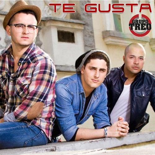 Te Gusta by Grupo Treo