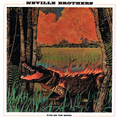 Fiyo On The Bayou von The Neville Brothers
