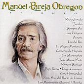 Manuel Pareja Obregoni Tributo by Various Artists