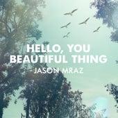 Hello, You Beautiful Thing by Jason Mraz