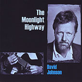 The Moonlight Highway by David Johnson